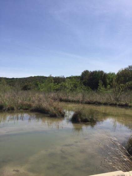 Llano River White's Crossing.JPG